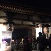 桜満開!~東寺 ライトアップ~
