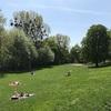 公園で裸になり解放されるドイツ人