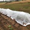 秋の長雨と低温対策で、不織布でトンネルを作りました…