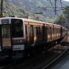 JR定光寺駅のスラローム 211系・EF64・383系・・・