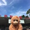 上野動物園を攻略したい。