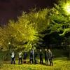 寒い~11月5日(木)