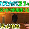 キノピチュいせき スカスカ穴21ヶ所  (スカスカ穴修復率100%)【ペーパーマリオ オリガミキング】 #83