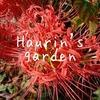 『季節の植物』9月の庭の植物&昆虫~ランタナの色の変化~