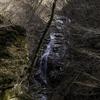 美しい渓谷を見にいった(はずだった) ~西沢渓谷~