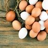 「卵は一日1個まで」は間違いだった⁉︎ 何個までなら食べてOK?