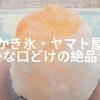 【草加】「ヤマト屋」で柔らかな口どけの絶品かき氷を食べる!