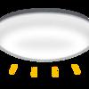人生初の蛍光ランプ交換