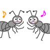 アリの観察をしよう