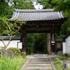 京都 青モミジの「血天井」の正伝寺