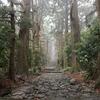 【豪雨の2日目】和歌山をぐるっとひとり旅