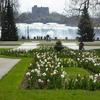 【カナダ春の周遊旅10】春のナイアガラ・クイーンビクトリアパーク散策