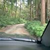 23ジムニーで初の林道。千葉県君津市の諏訪線?