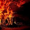 コロナウィルス 海外の報道:「WHO: 中国以外でも大火となる恐れも」