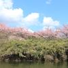 2019年3月9日 亀山湖