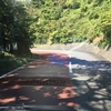 路面、赤色の理由それいかに(大島一周道路各所の赤い路面)