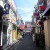 【今週のラーメン1309】 ラーメン凪 新宿煮干 新宿ゴールデン街店 (東京・新宿) 塩ラーメン