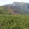 【2677m】超インドア派が初めてガチ登山をしてみた結果