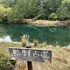 1号橋の池(仮称)(和歌山県太地)