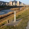 樋門の変わる河岸