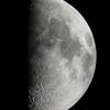 上弦の月(月齢8.628)