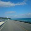 はじめての沖縄ドライブ旅行*美ら海水族館を満喫後、古宇利大橋を爆走したおすすめルートを紹介【二日目】