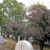 村一円の神社
