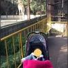 年始のお出かけは動物園がオススメ。全国の動物園の年始開園状況を調べました。