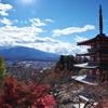 念願の「新倉山浅間公園」に行って来た。