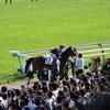レース回顧 日本ダービー(第85回日本ダービー 観戦レポ)