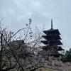 3月奈良旅行