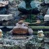 「愛」の泉(京都府京都)