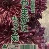 17年後に届けた「もって菊」レシピ