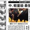「夏の全島闘牛大会」