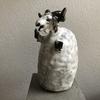 風船山羊鉢 X アロエ「クリスマスキャロル」