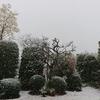 彼岸の大雪、、、