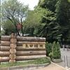 【川崎市】最大規模の自然溢れる場所!生田緑地公園で遊ぼう!