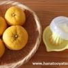 【100均】セリアの「蓋つきレモン搾り」でゆずジュース作り