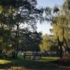 バーベキューのメッカ!秋ヶ瀬公園