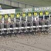 11月21日 東京競馬 注目馬