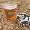 【続】セントパトリックスクラフトフェスティバル@相模原デポに行ってきました。芝生の上でクラフトビール呑めるなんてサイコー!!それにしても何を呑もうか迷う