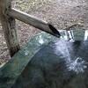 奈良田の御符水