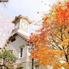 札幌散歩 時計台〜赤れんが庁舎〜札駅【 札幌暮らし 】