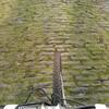 サルとトドのオランダ・ベルギー珍道中 (その1) モリタロウは見た!本場のレース(前編)