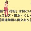 韓国語で「花粉」は何という?|鼻がムズムズ・鼻水・くしゃみ…【関連単語&例文あり】