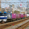 2月12日撮影 東海道線 平塚~大磯間 貨物列車3本撮影 5095ㇾ 2079ㇾ 71ㇾ
