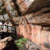 【オーストラリア】ダーウィン旅行記⑤ 5日目 世界遺産カカドゥ国立公園ツアー