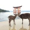 厳島神社の鳥居の亀裂に小銭を差し込むと犯罪!?禁止されてる理由は?