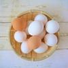 5大栄養素の簡単な覚え方?保育士試験に出る栄養素の役割と食材【ツナガレ介護福祉ケア】