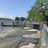 多摩川左岸を歩く その4 多摩大橋から羽村堰